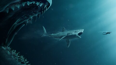 A big shark eating a big dude BUT itself being eaten by a larger shark, it's incredible. The Meg movie backdrop.