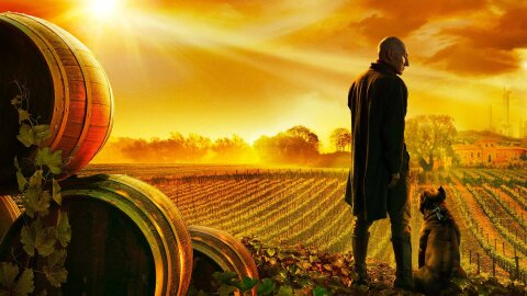 Picard and his dog on a peaceful vineyard in the future